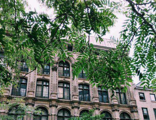 B a c k I n T o w n  #montreal #morning #street #pic #picture #city #building #old #town #downtown #fav #beauty #art #architecture #tree #green #plants #everywher #travel #travelgram #mtl #mtlmoments #summer #morning #goodmorning #july